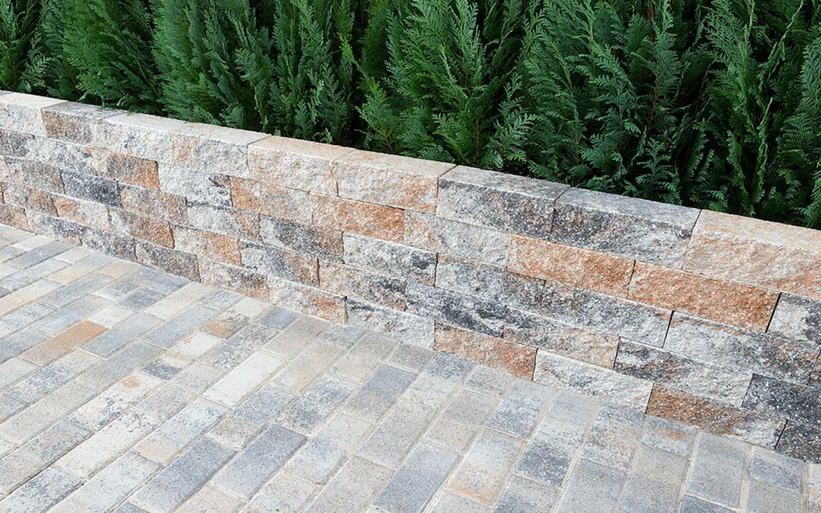 Bonsai Mauer muschelkalk
