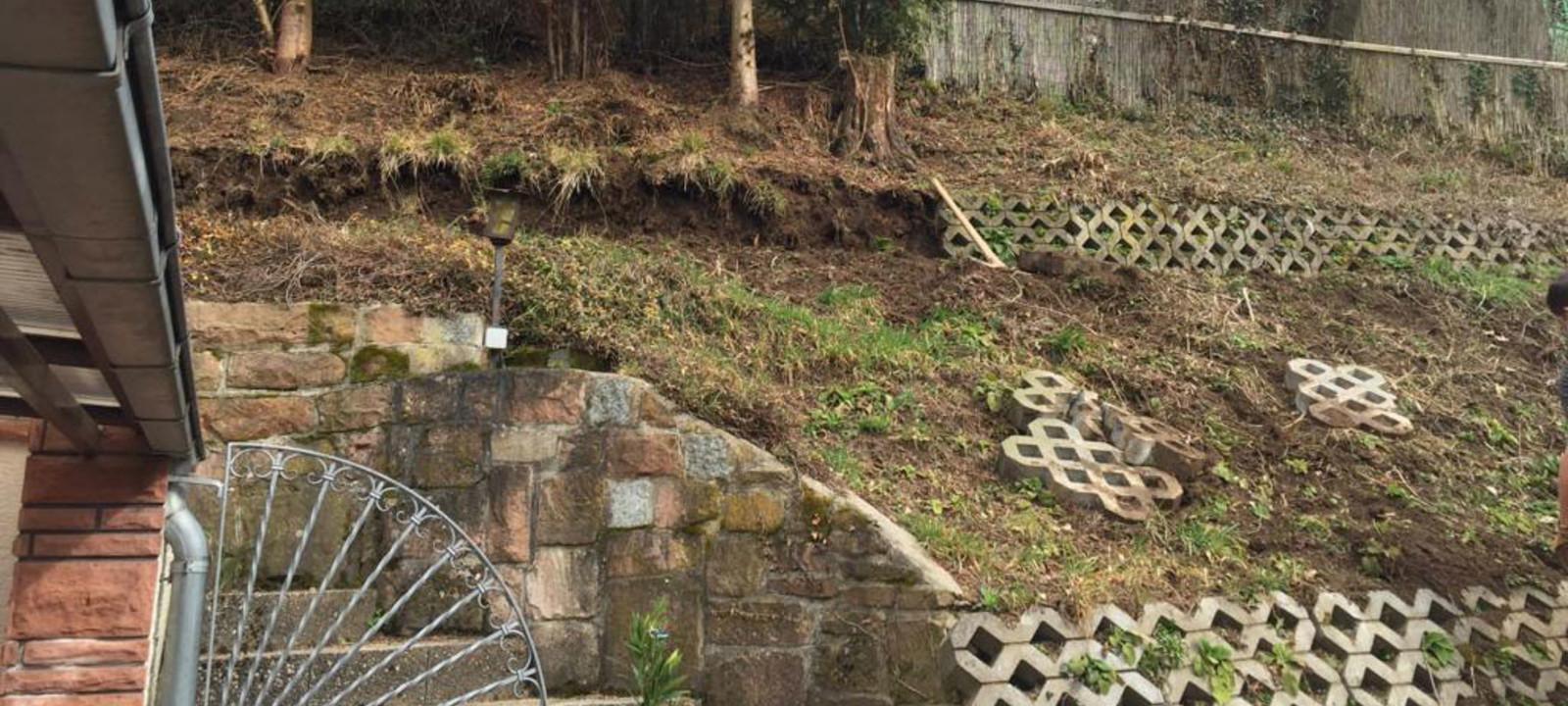 Vorher Bild Garten
